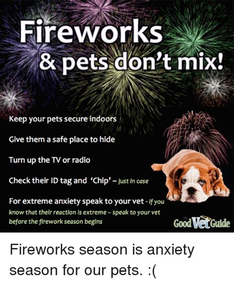 Fireworks & Pets Don't Mix! Keep Your Pets Secure Indoors