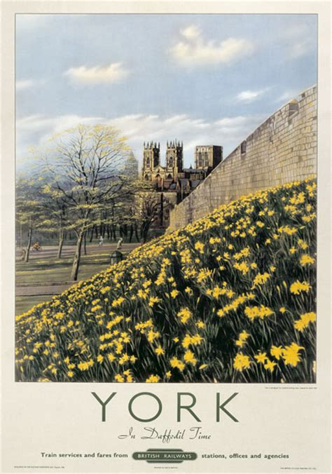 York in Daffodil Time Yorkshire
